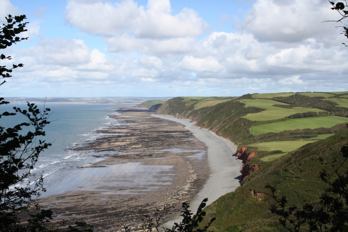 North Devon coastline seen from Peppercombe Castle