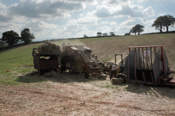 read-combing in Mid Devon
