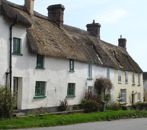 terrace of cob and thatch cottages in Sheepwash